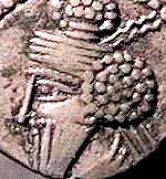 Coin of the rebel king Gotarzes I.